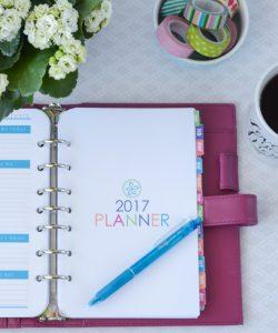 2017 Printable Planner Calendar